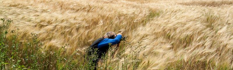 ccadieux_photographe_nature